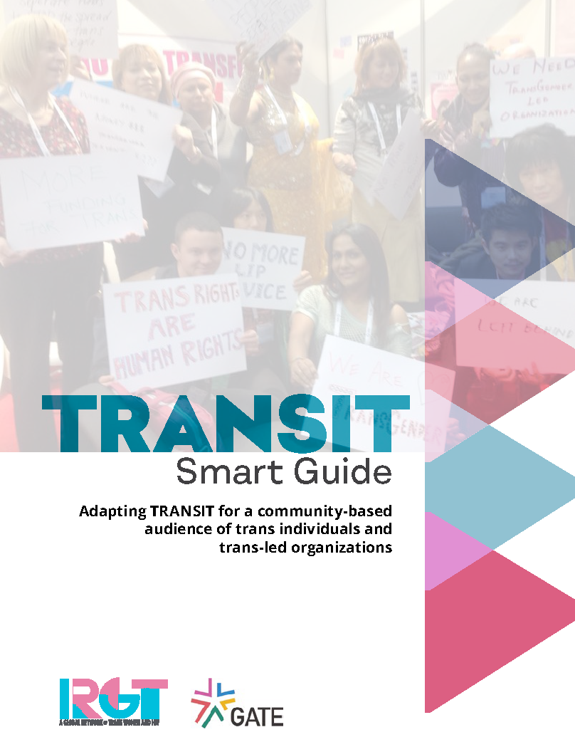 Cover image for TRANSIT Smart Guide